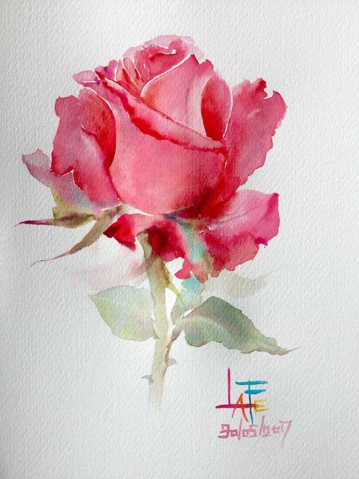 dibujos de rosas faciles fotos de dibujos con acuarela originales como dibujar una rosa paso a paso rosas color rosado