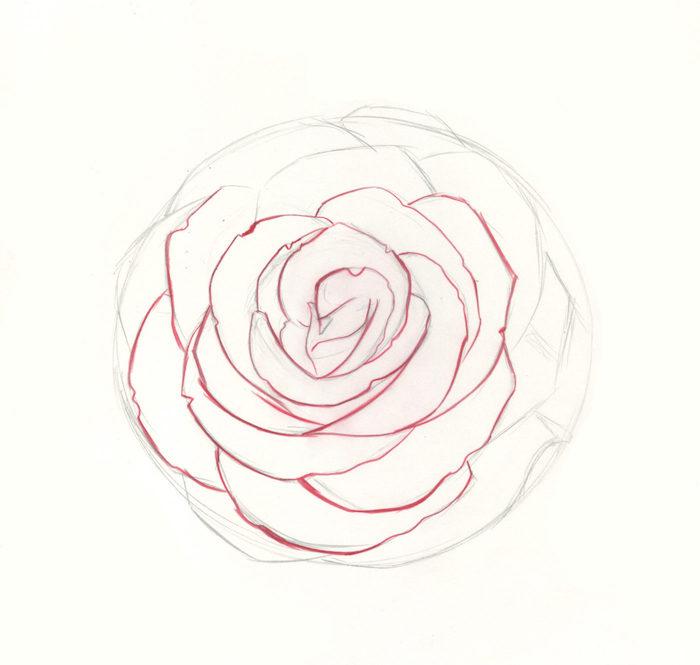 ejemplos de rosa dibujo petalos de rosa roja dibujos de flores faciles de hacer en casa