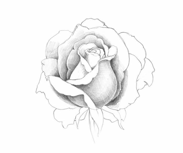 fascinantes ideas de dibujos de rosas a lapiz en blanco y negro ideas de dibujos chulos faciles de hacer