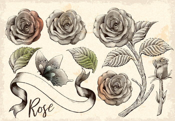 retro roses decorative elements set