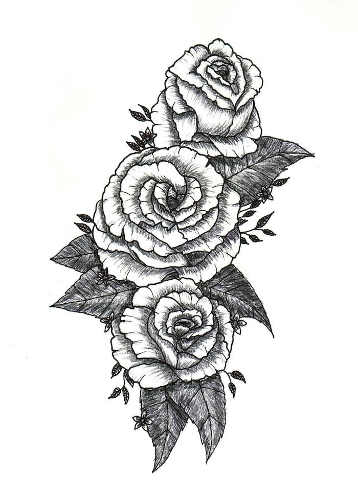 geniales ideas de dibujos de flores dibujos de rosas fotos de dibujos en blanco y negro como dibujar una rosa paso a paso