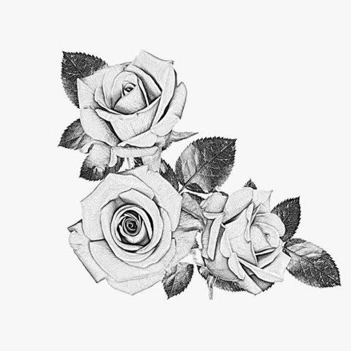 hermosos dibujos de rosas flores ideas de dibujos faciles para dibujar fotos de dibujos en blanco y negro