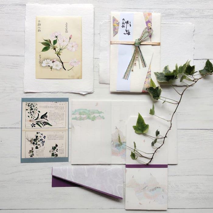 adorables ejemplos de dibujos botanicos japoneses fotos originales detalles chulos bonitos