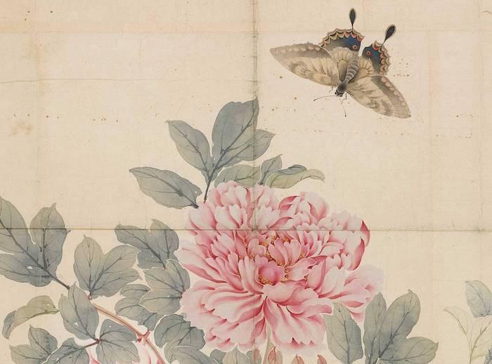 bonitos ornamentos mariposas flores ideas de estampados bonitos fotos de dibujos en colores