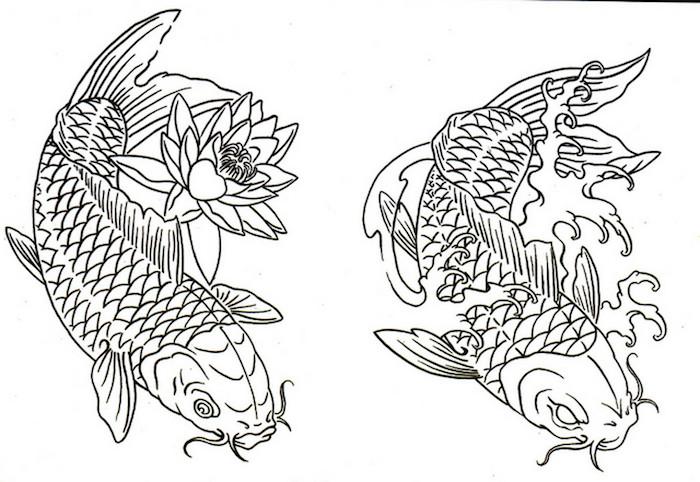como dibujar pez koi ideas de dibujos en blanco y negro faciles de hacer fotos de dibujos dibujos faciles paso a paso