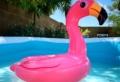 ¿Cómo elegir una piscina?