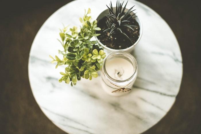 plantas verdes como hacer una vela usted mismo vela blanca en un frasco transparente