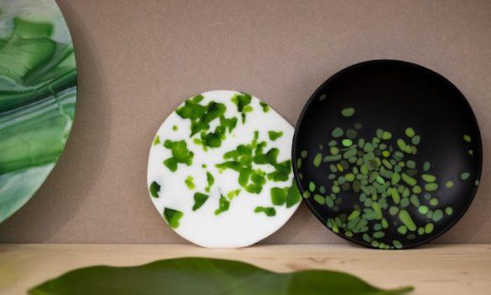 platos para manualidades en blanco y verde