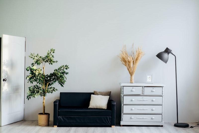 pequeño sofá con lámpara de lectura de planta de interior gris oscuro grande